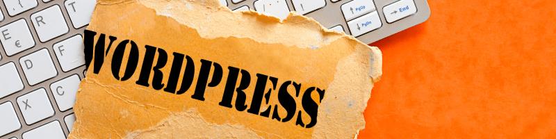 de ce sa alegi wordpress